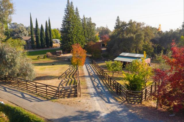 9940 Haskin Ranch Road, Newcastle, CA 95658 (MLS #18078795) :: Heidi Phong Real Estate Team