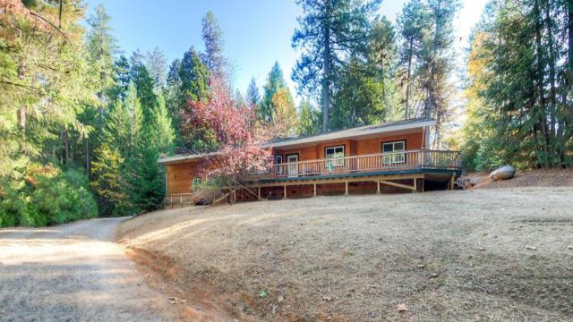 5109 Coot Road, Placerville, CA 95667 (MLS #18078969) :: Keller Williams Realty Folsom