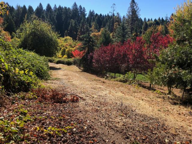 0 Cold Springs Drive, Foresthill, CA 95631 (MLS #18079085) :: Keller Williams - Rachel Adams Group