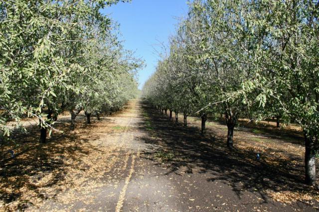 0 Tim Bell Road, Oakdale, CA 95361 (MLS #18079430) :: Keller Williams Realty Folsom