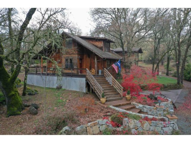 10177 Country Downs, Rough And Ready, CA 95975 (MLS #18079750) :: Dominic Brandon and Team