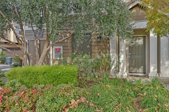 296 W Gaspara Drive, Mountain House, CA 95391 (MLS #18079966) :: REMAX Executive