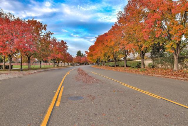 9448 Crystal Shore Lane, Elk Grove, CA 95758 (MLS #18080120) :: Keller Williams Realty - Joanie Cowan