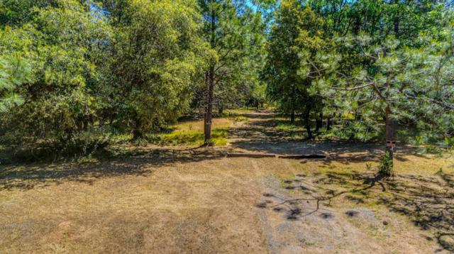 10380 Ponderosa Way, Pine Grove, CA 95665 (MLS #18080279) :: Dominic Brandon and Team