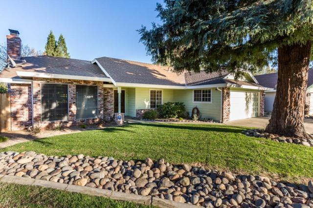5603 Bluffs Court, Rocklin, CA 95765 (MLS #18080322) :: Dominic Brandon and Team