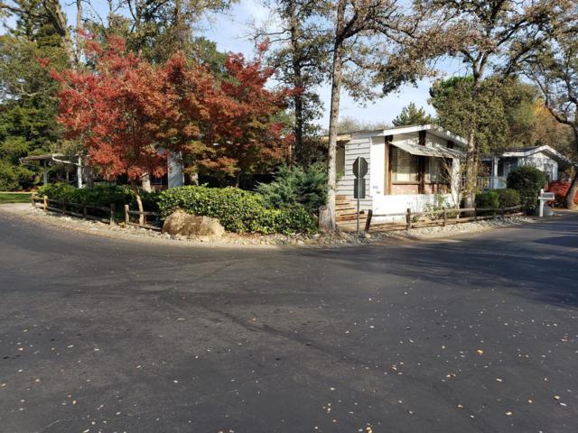 450 Nugget Drive, Folsom, CA 95630 (MLS #18080645) :: REMAX Executive