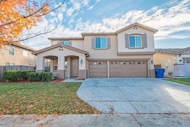 1442 Longhorn Lane, Patterson, CA 95363 (MLS #18080687) :: The Del Real Group