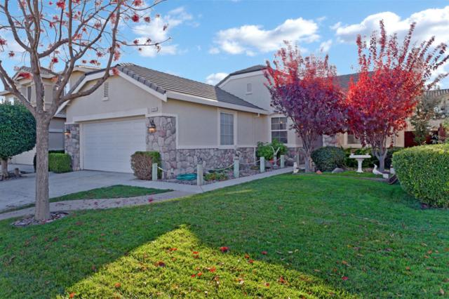 2162 Golden Gate Drive, Tracy, CA 95377 (MLS #18080690) :: REMAX Executive