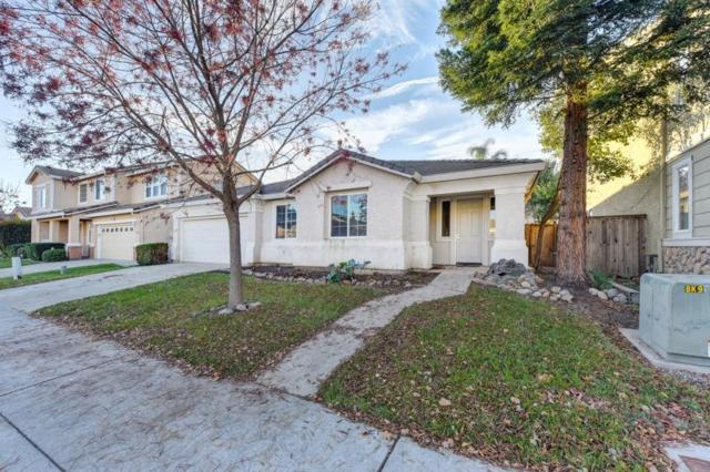 3253 Spinning Rod Way, Sacramento, CA 95833 (MLS #18080829) :: Keller Williams Realty - Joanie Cowan