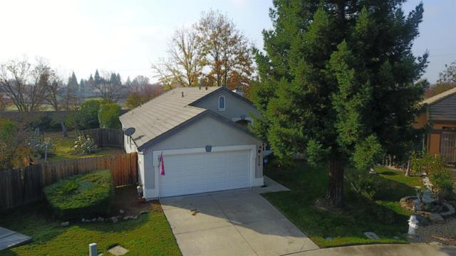 8778 Owlet, Elk Grove, CA 95624 (MLS #18081278) :: Keller Williams Realty Folsom
