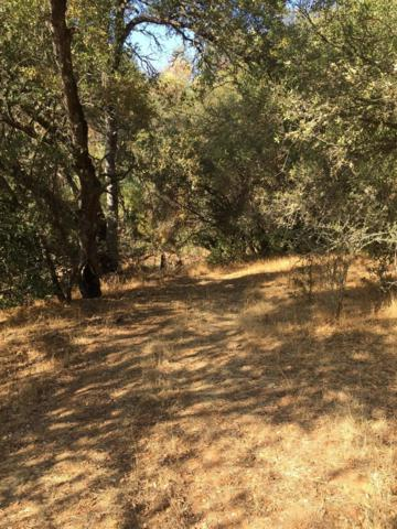 0 Highway 49, Coulterville, CA 95311 (MLS #18081387) :: REMAX Executive