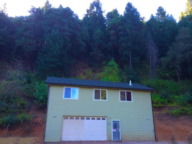 14465 Owl Road, Pine Grove, CA 95665 (MLS #18081417) :: Heidi Phong Real Estate Team