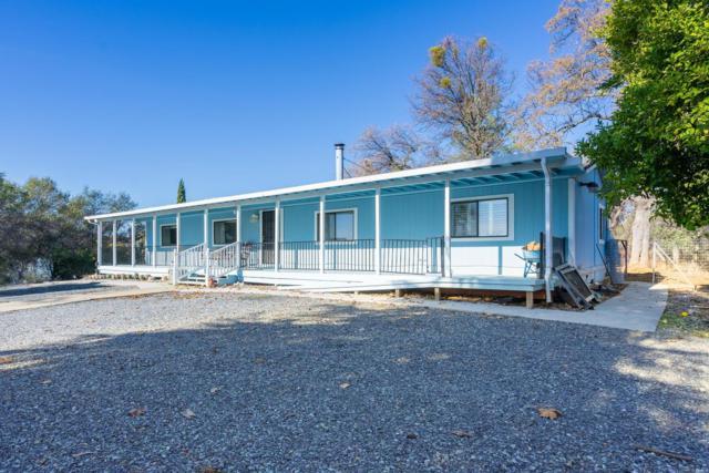 5100 Holly Drive, Shingle Springs, CA 95682 (MLS #18081526) :: REMAX Executive