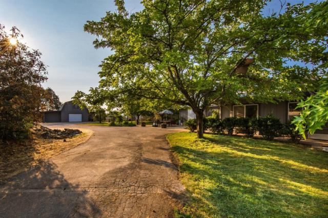 2980 Gillespie Road, Cool, CA 95614 (MLS #18081908) :: The Del Real Group
