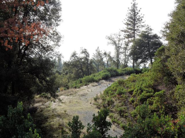 18570 Wildlife Trl, Fiddletown, CA 95629 (MLS #18082318) :: Keller Williams - Rachel Adams Group