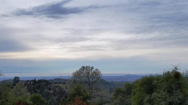 18338 Robin Ridge, Sonora, CA 95370 (MLS #18082464) :: REMAX Executive