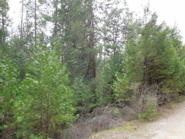27360 Whitmore, Pioneer, CA 95666 (MLS #18082714) :: The Del Real Group