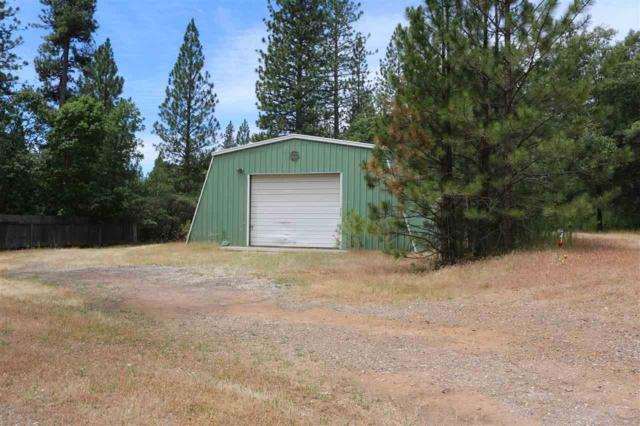 119 John Deere Road, West Point, CA 95255 (MLS #18600015) :: NewVision Realty Group