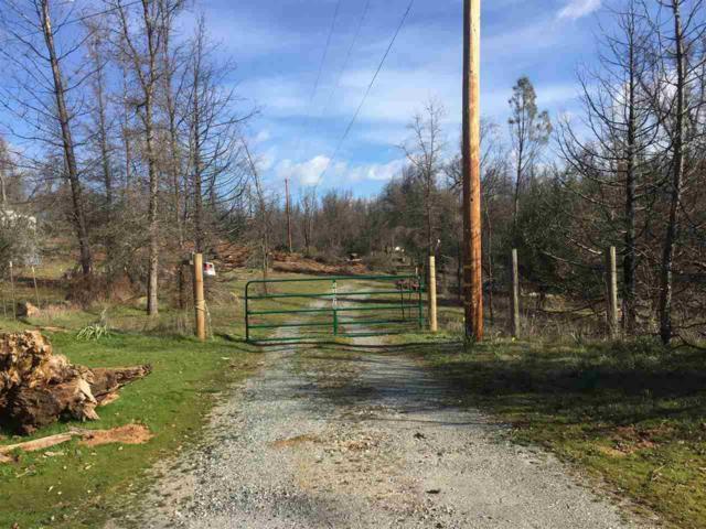 11070 Francine Road, Mountain Ranch, CA 95246 (MLS #18600331) :: REMAX Executive