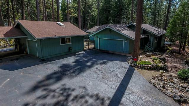 25594 Shake Ridge Road, Volcano, CA 95689 (MLS #18600531) :: Heidi Phong Real Estate Team