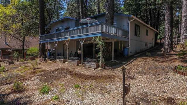 17940 Timber Court, Pioneer, CA 95666 (MLS #18600590) :: Heidi Phong Real Estate Team