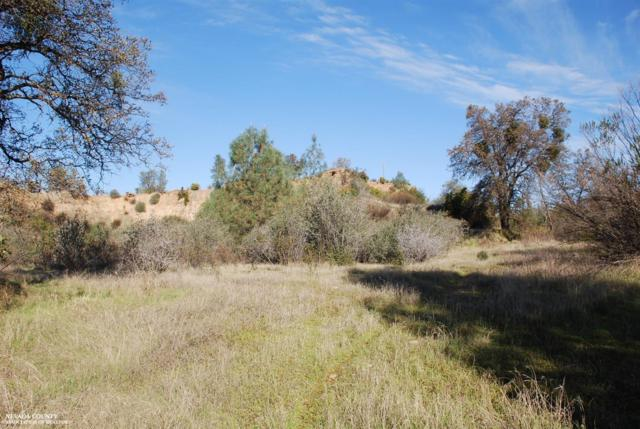 0 State Hwy 20 Highway, Smartsville, CA 95977 (MLS #18603917) :: REMAX Executive