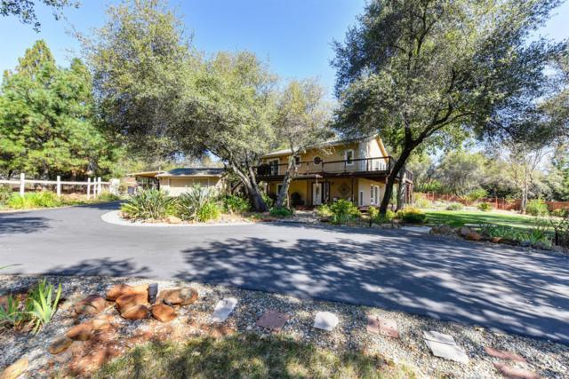3545 Meder Road, Shingle Springs, CA 95682 (MLS #19000104) :: REMAX Executive