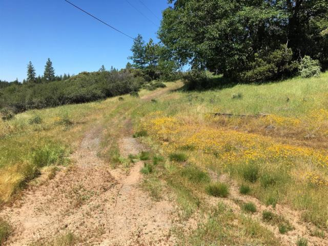 0 Casselbarry Ct, Pollock Pines, CA 95726 (MLS #19000681) :: The MacDonald Group at PMZ Real Estate