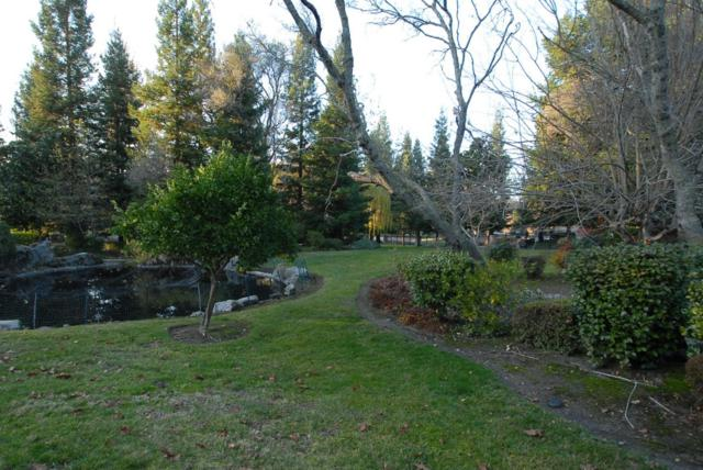 8820 Vista De Lago Court, Granite Bay, CA 95746 (MLS #19000706) :: Dominic Brandon and Team