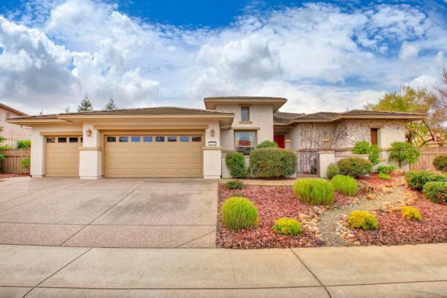 2300 Sutter View Lane, Lincoln, CA 95648 (MLS #19000847) :: REMAX Executive