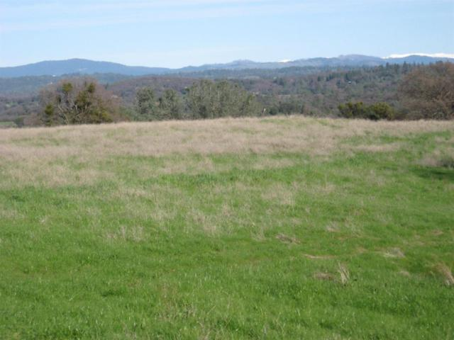 21-Acres N 5601 Gold Hill Road, Placerville, CA 95667 (MLS #19000976) :: The Del Real Group