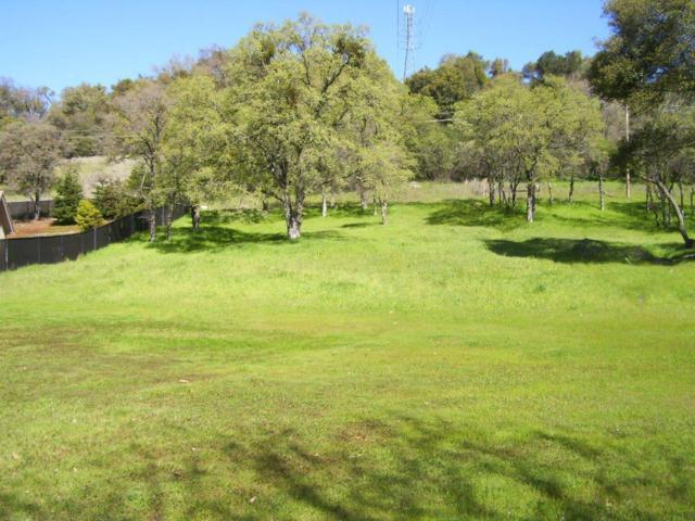 720 Deerbrooke Trail, Auburn, CA 95603 (MLS #19001565) :: REMAX Executive