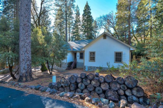 1312 Squaw Rock Trail, Kyburz, CA 95720 (MLS #19001761) :: Dominic Brandon and Team