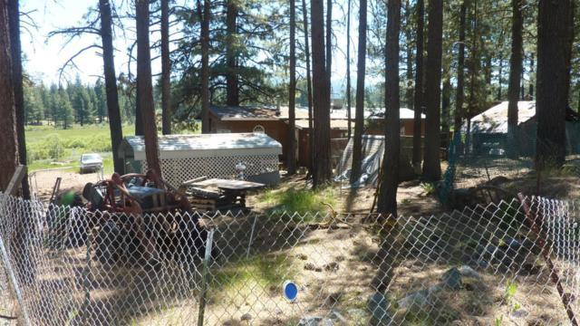 5928 Iron Horse Drive, Portola, CA 96122 (MLS #19002177) :: Keller Williams - Rachel Adams Group