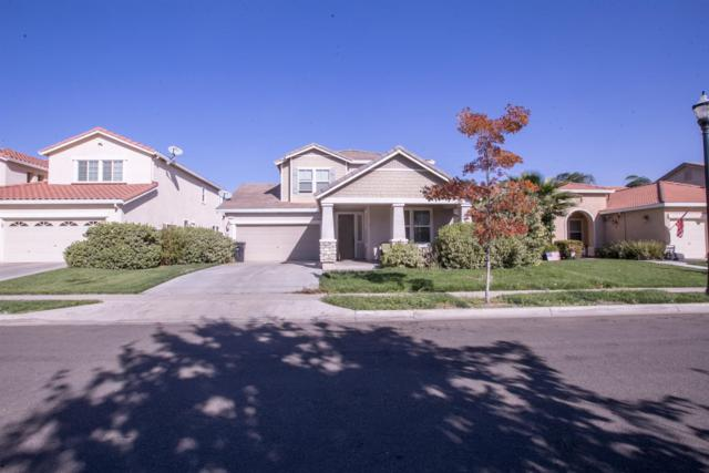 1257 Sweet Pea Drive, Patterson, CA 95363 (MLS #19002277) :: The Del Real Group