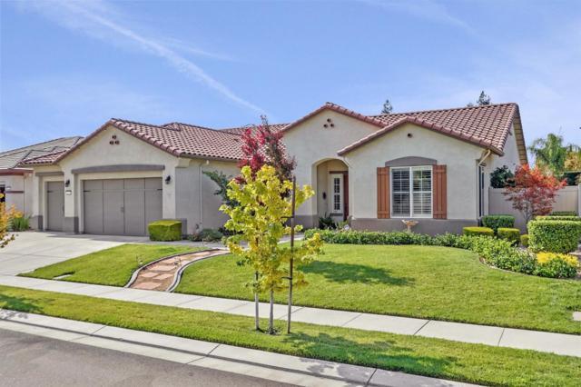 1534 Knollwood Street, Manteca, CA 95336 (MLS #19002295) :: REMAX Executive