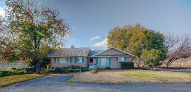 16255 Clover Avenue, Patterson, CA 95363 (MLS #19002394) :: REMAX Executive