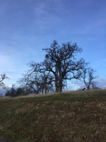 0 Buena Vista, La Grange, CA 95329 (MLS #19002413) :: Dominic Brandon and Team
