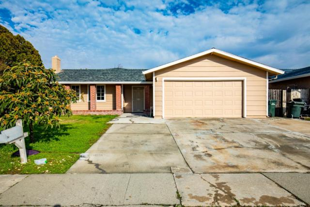 8334 Southfields Circle, Sacramento, CA 95828 (MLS #19002466) :: Heidi Phong Real Estate Team