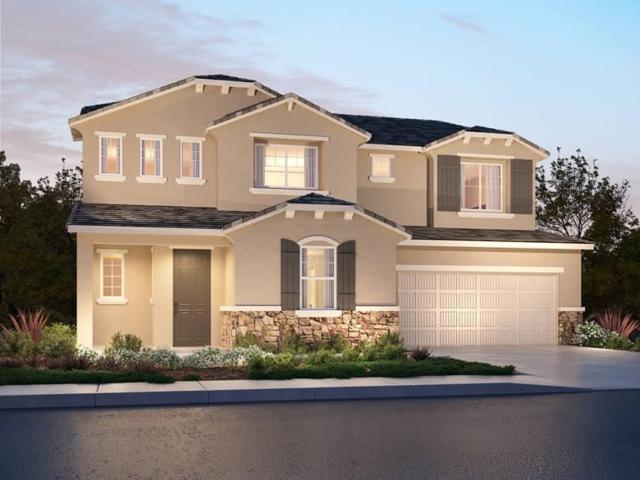 8404 Tapies Way, Elk Grove, CA 95624 (MLS #19002645) :: Heidi Phong Real Estate Team
