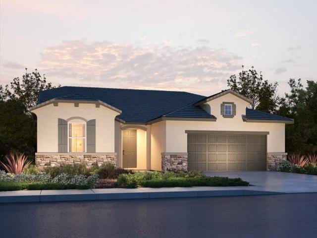 8405 Tapies Way, Elk Grove, CA 95624 (MLS #19002696) :: Heidi Phong Real Estate Team