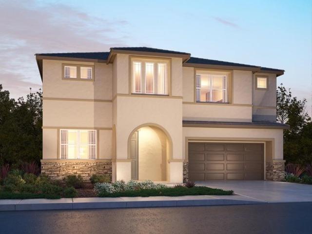 8408 Tapies Way, Elk Grove, CA 95624 (MLS #19002709) :: Heidi Phong Real Estate Team
