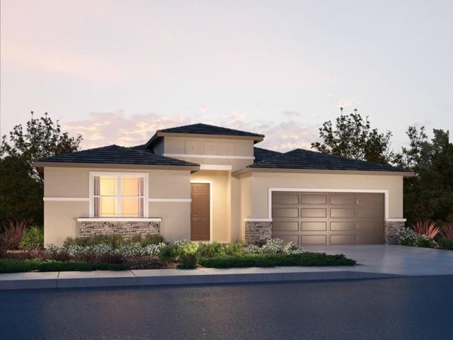 8401 Tapies Way, Elk Grove, CA 95624 (MLS #19002724) :: Heidi Phong Real Estate Team