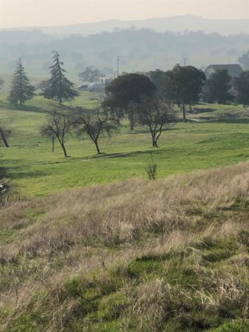 0 Banderilla Drive, La Grange Unincorp, CA 95329 (MLS #19002788) :: Keller Williams - Rachel Adams Group