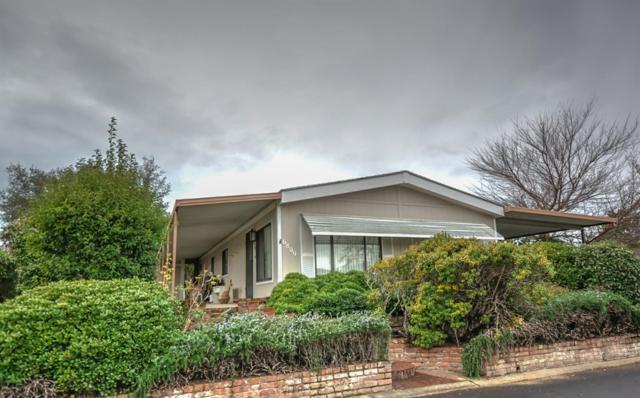 6809 Tandy Lane, Citrus Heights, CA 95621 (MLS #19002971) :: Keller Williams - Rachel Adams Group