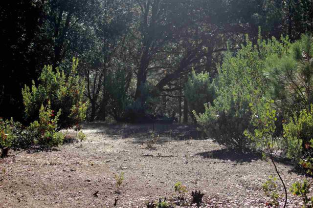 16200 Soke Springs Ranch Road, Sutter Creek, CA 95685 (MLS #19004161) :: The MacDonald Group at PMZ Real Estate