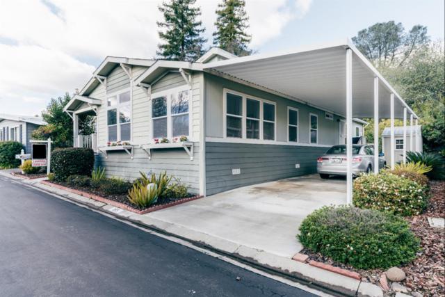 355 Overbrook Drive, Folsom, CA 95630 (MLS #19004273) :: REMAX Executive