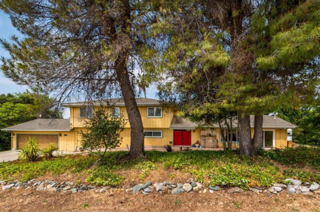 1800 Palmcrest Lane, Penryn, CA 95663 (MLS #19004392) :: Heidi Phong Real Estate Team