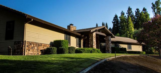 11207 Valley Oak Drive, Oakdale, CA 95361 (MLS #19004887) :: REMAX Executive