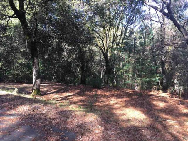 0-Lot 9 Mineral Ridge Court, Pine Grove, CA 95665 (MLS #19005000) :: Dominic Brandon and Team